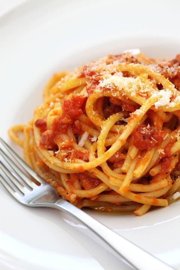 Amatriciana, cocina italiana de las pastas fotografía de archivo libre de regalías