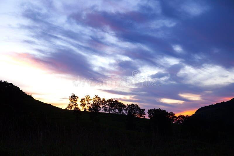 Amazeing słońce i, Sinharaja dżungla obrazy stock