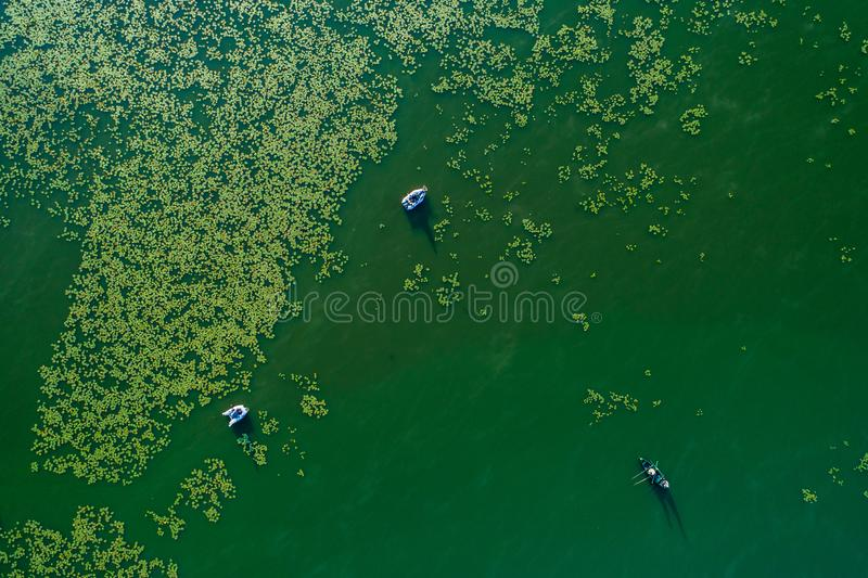 Top view, aerial lake stock photography