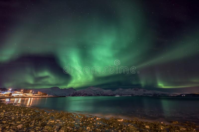 Amazing aurora borealis - northern lights - north Norway. Amazing aurora borealis - northern lights - view from coast in Vagnes, near Tromso city - north Norway royalty free stock photo