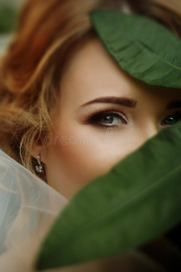Amazing bride portrait with green leaves and sensual eye look. e royalty free stock image