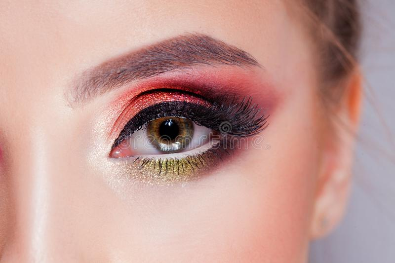 Amazing Bright eye makeup in luxurious scarlet shades. Pink and blue color, colored eyeshadow royalty free stock image