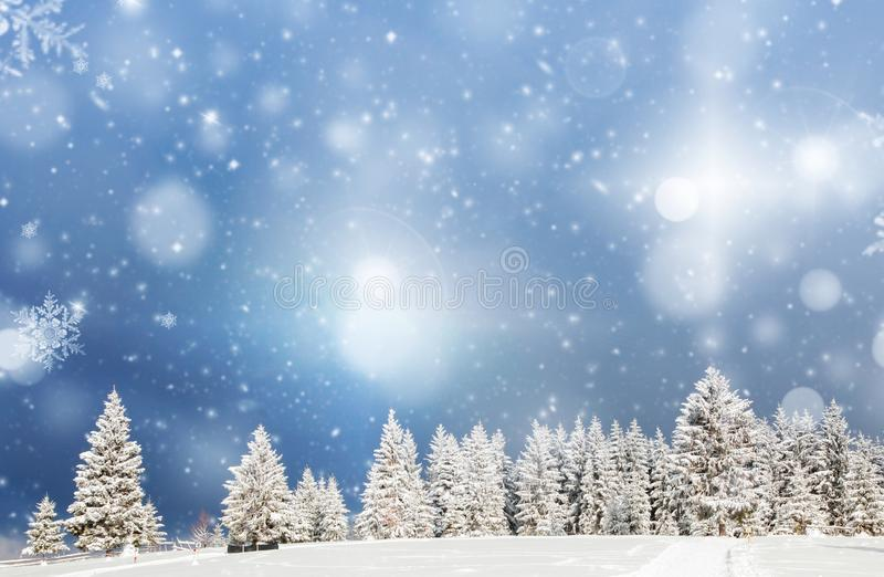 Amazing Christmas background with snowy firs winter landscape. Forest, frost, nature, sky, season, tree, mountain, cold, beautiful, wonderland, ice, outdoor stock photo