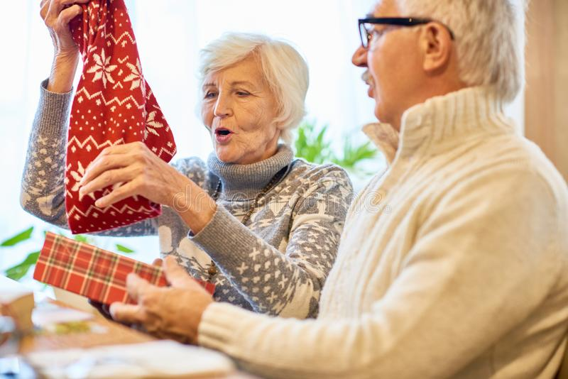 Amazing Christmas Gifts for Grandparents royalty free stock photography