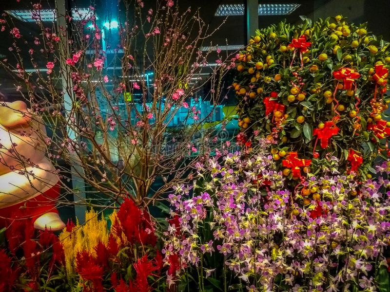 Amazing cluster of various flowers at Singapore airport. Inside view of Singapore airport. Inside view of an airport. Amazing cluster of various flowers at stock photo