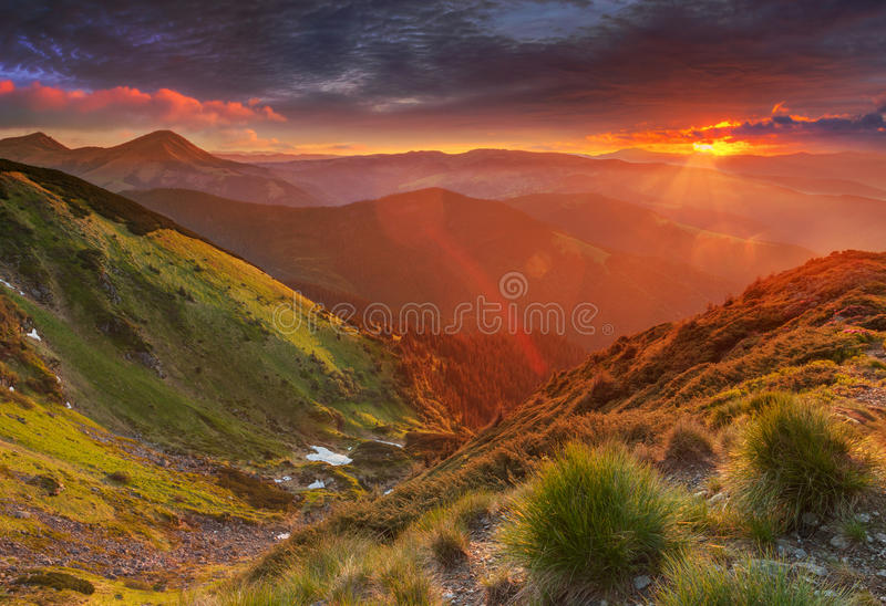 Amazing colorful sunrise in mountains with colored sunrays and fresh grass on foreground. Dramatic colorful scene in mountains.  stock photo