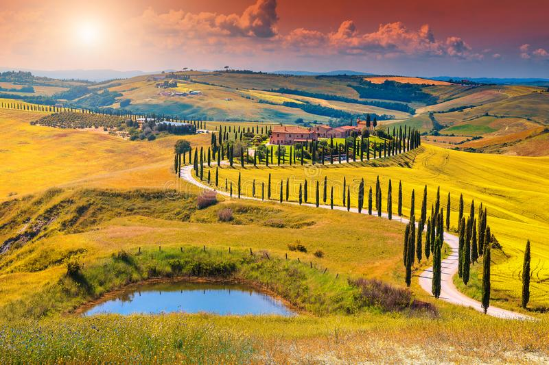 Autumn Tuscany landscape with curved road and cypress, Italy, Europe. Amazing colorful sunset in Tuscany. Picturesque agrotourism and typical curved road with stock image
