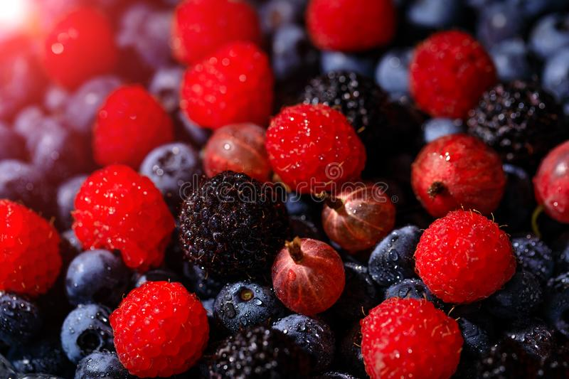 Amazing composition of red raspberries and gooseberries on background of blue blueberries. Ripe and juicy fresh berries, close-up royalty free stock image