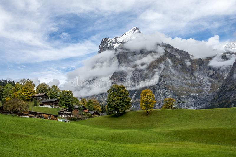 Amazing dream like Swiss alpine mountain landscape. Wooden chalets on green fields and high mountains with snowy peaks background, in Grindelwald of stock photos