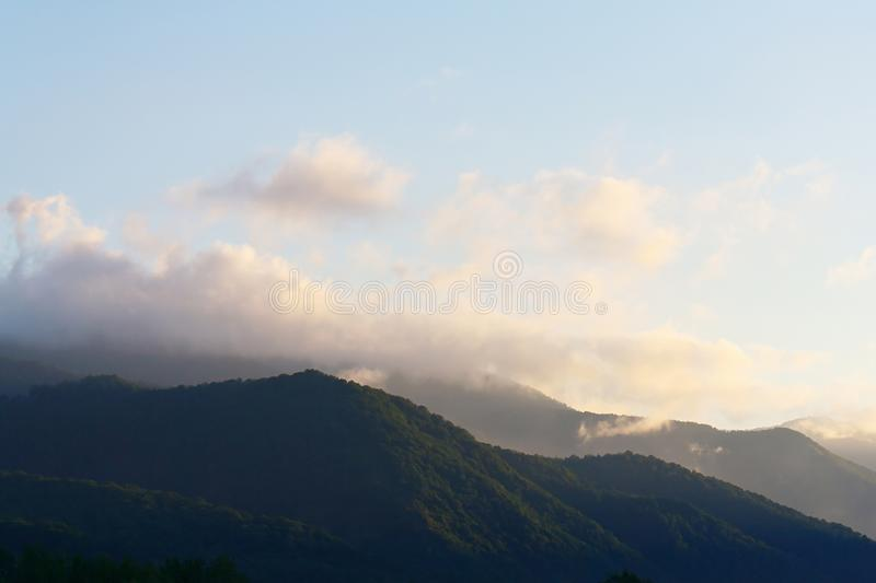Amazing early morning in mountains covered with forests stock photos