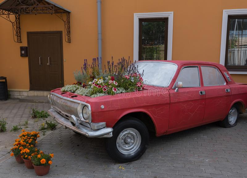 Installation of flowers on the hood of the car. Amazing flower arrangement on the hood of an old conscientious car, a photograph taken in the courtyard of a royalty free stock photography