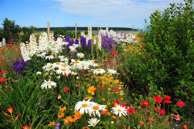 Amazing flower garden. A colorful garden on the shore of the St-Lawrence river in Quebec, Canada with mountain, sky and water in background royalty free stock photos