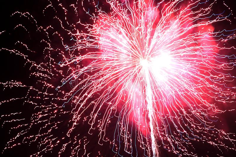 Fireworks on a black background royalty free stock image