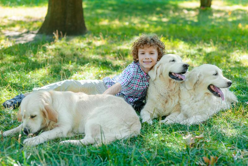 Amazing friends of one cute boy. Lie on the ground in the park. Little child looks right in the camera with spread smile and fiery eyes. Three awesome dogs near stock photos