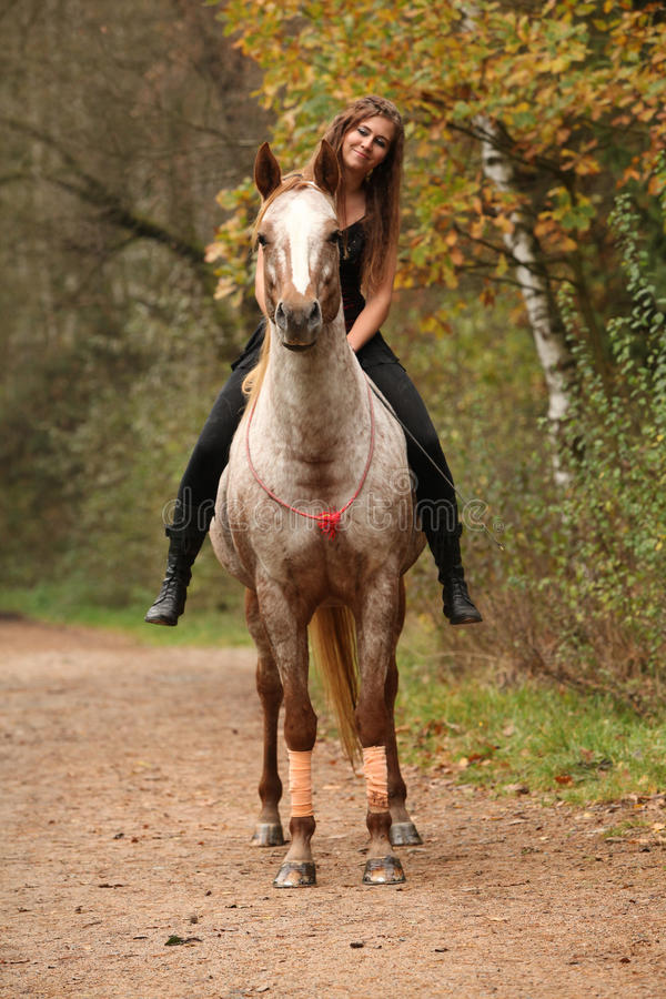Amazing girl riding a horse without bridle. In autumn stock image