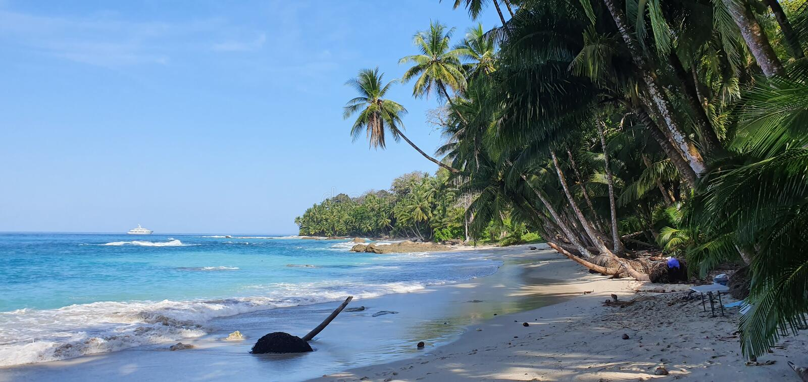 Amazing beach with lots of palmtrees, blue water, white sand royalty free stock images