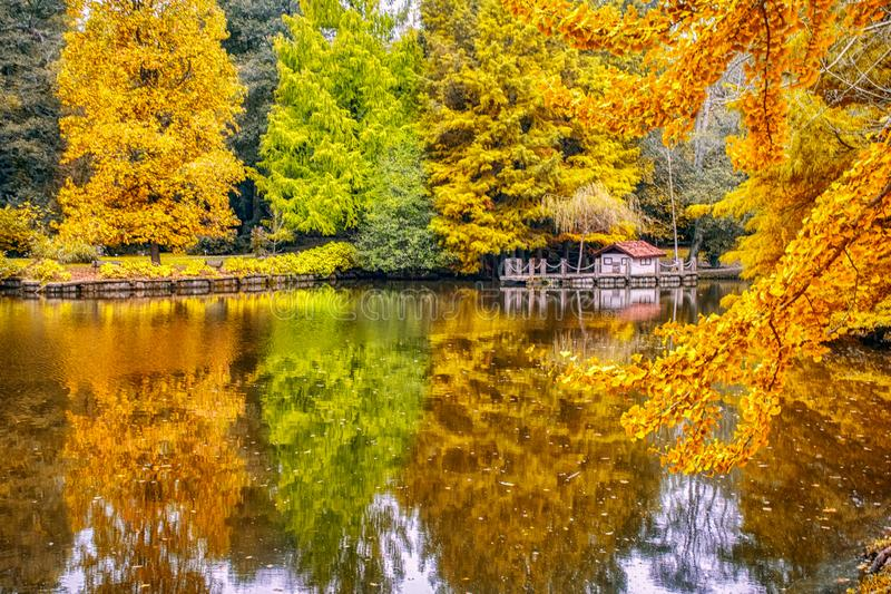 Amazing lake in the Arboretum. Ataturk Arboretum Botanic Park in Istanbul royalty free stock photos