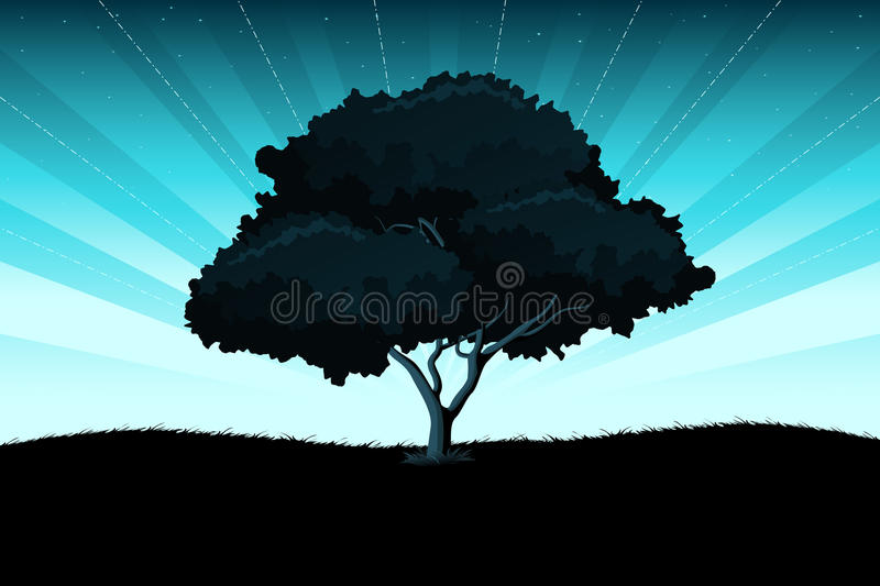 Download Amazing landscape stock vector. Image of tree, night - 13134130