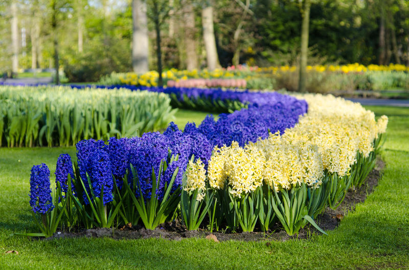 Amazing landscape with colorful flower beds and flower patterns stock image