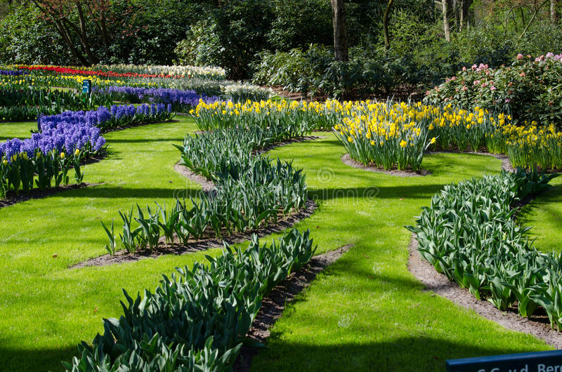 Amazing landscape with colorful flower beds and flower patterns stock photography