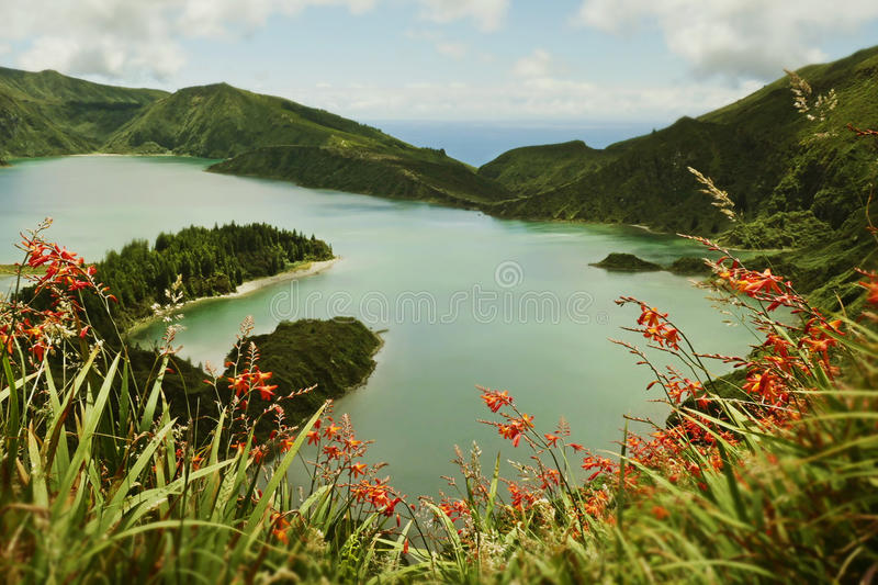 Amazing landscape view of crater volcano lake and flowers in Sao Miguel isla of Azores stock photo