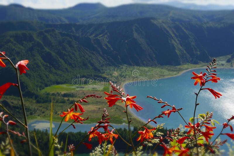 Amazing landscape view of crater volcano lake in Sao Miguel island Azores Portugal with flowers. Amazing landscape view of crater volcano lake in Sao Miguel stock photo