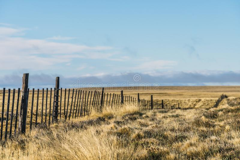 Amazing landscape view golden yellow dried glass hill with fence in autumn with cloud blue sky in south Patagonia, Chile and. Argentina, most iconic beautiful royalty free stock image