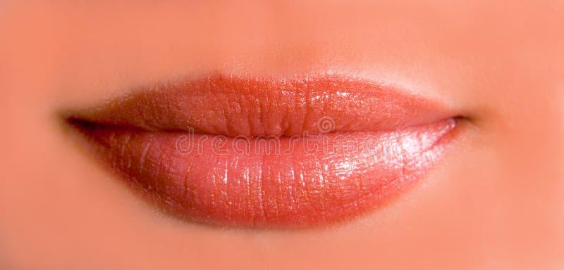 Amazing lips royalty free stock photo