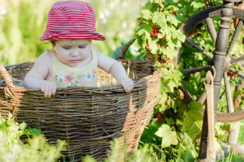 A cute little girl sits on a hay in a basket in the garden royalty free stock photography