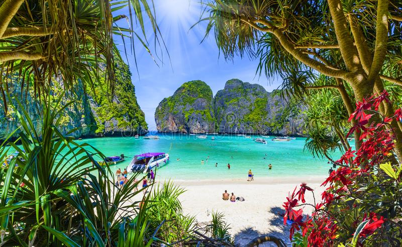 Amazing Maya beach in Phi Phi Islands, Thailand royalty free stock photos
