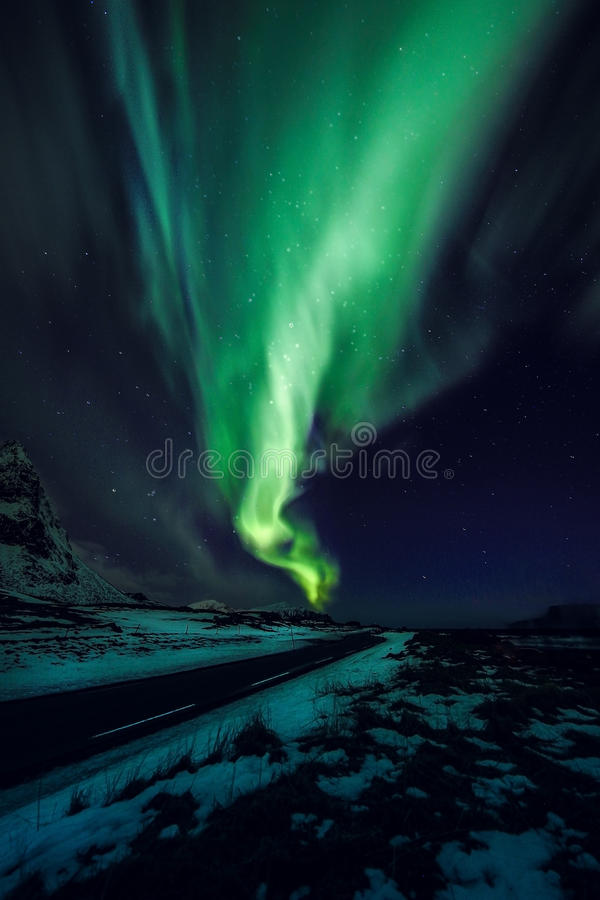 Amazing multicolored green Aurora Borealis also know as Northern Lights in the night sky over Lofoten landscape, Norway, Scandinav royalty free stock images