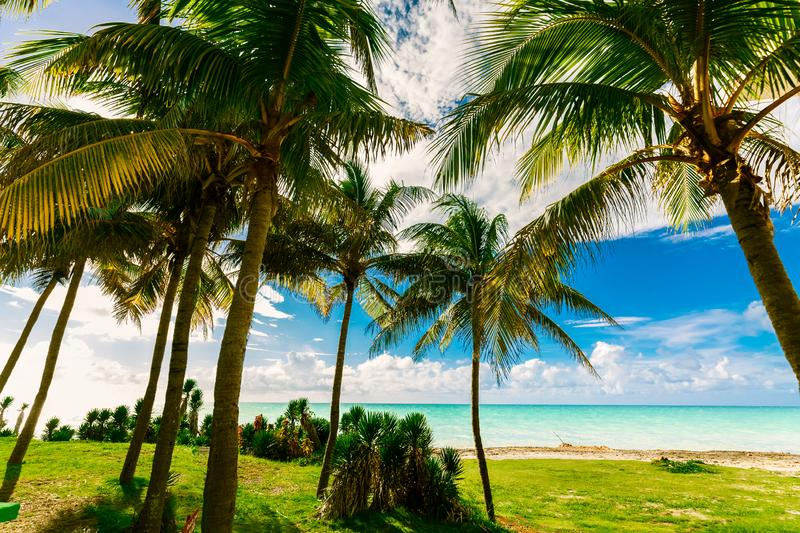 Amazing natural landscape view of Varadero Cuban beach and tranquil, turquoise ocean on blue sky background stock photography