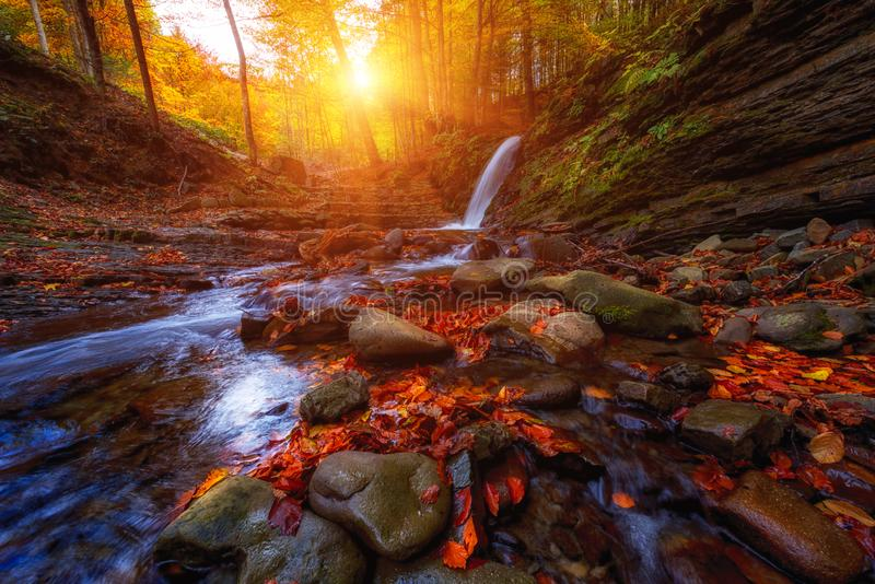 Amazing nature autumn landscape with waterfall in the forest royalty free stock photography