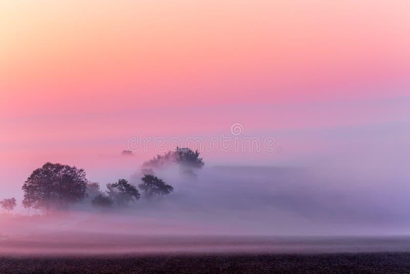 Amazing nature landscape in morning fog sunrise. Autumn scenic landscape of South Moravia in Czech Republic stock photography