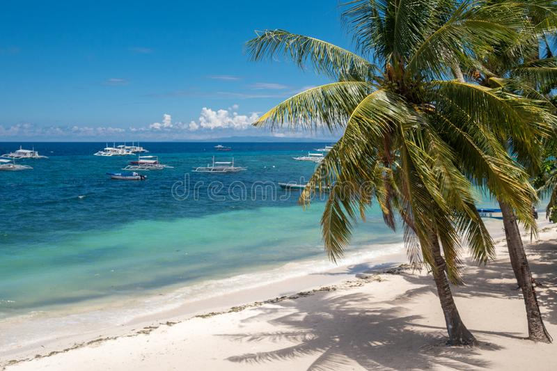 Amazing paradise Alona beach with palms in Bohol Panglao island, Philippines stock images