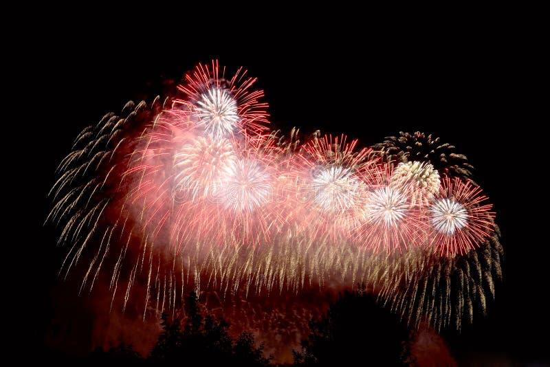 Amazing red, white, gold fireworks on dark background royalty free stock photos