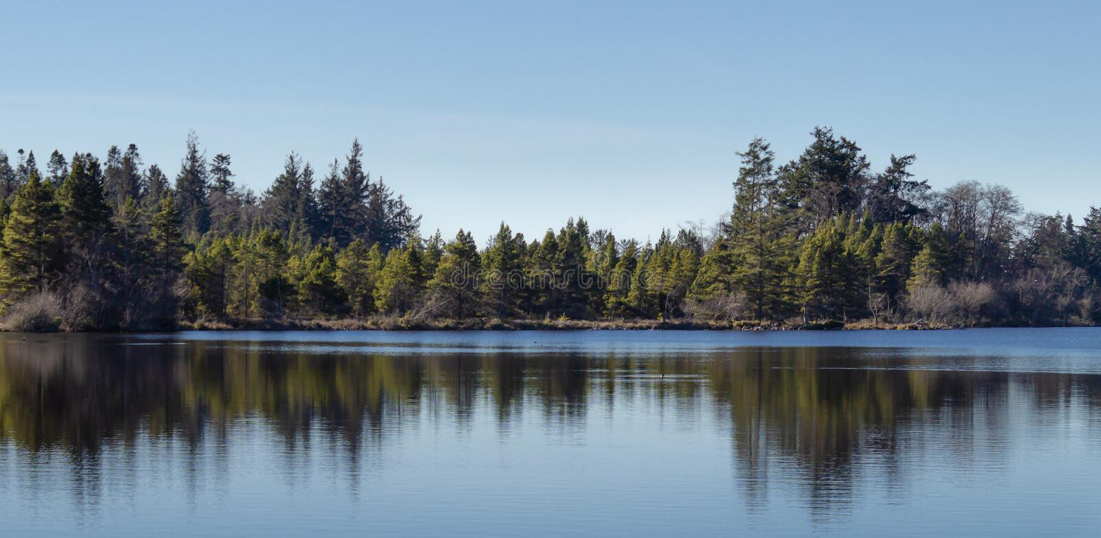 Tree reflections on the smooth clear waters of Cranberry Lake at Deception Pass, Washington. stock photos
