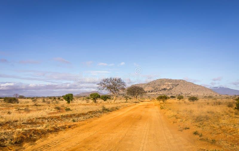 Safari road in Kenya stock photo