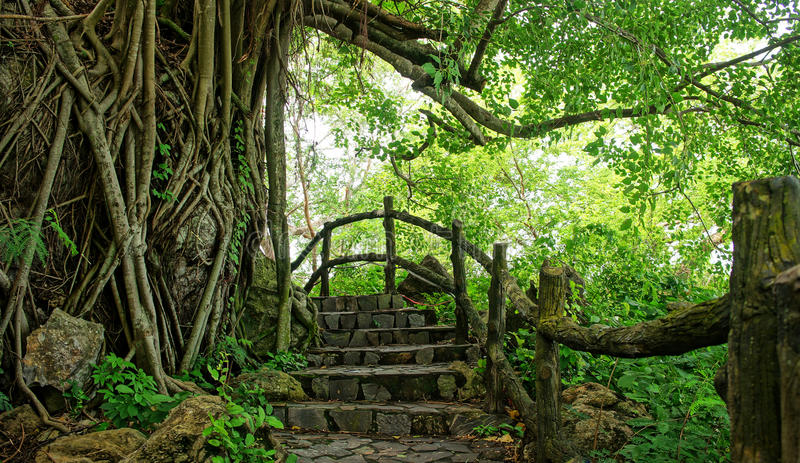 Amazing stone staircase, fence, tree. Amazing scene at Mekong Delta rocky mountain, old stone staircase with rock fence, tree with large tree trunk, abstrack stock photos