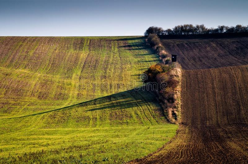 Amazing stripe patterns on waved fields of South Moravia. Called the Moravian Tuscany, green and brown autumn colors royalty free stock photography