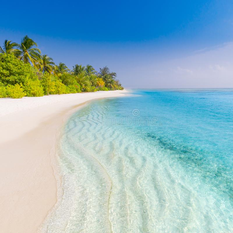 Summer beach banner background. Soft sand and endless sea view. Beach nature background stock image