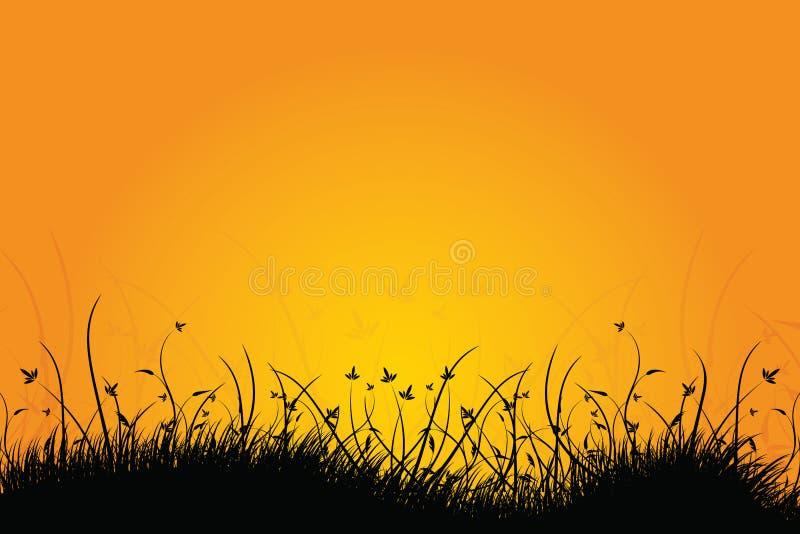 Amazing sunrise landscape vector illustration