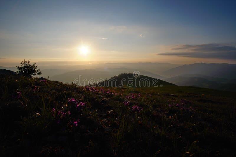 Sunrise in the mountains 2. Amazing sunrise in the Muntii Ciucului in Transylvania, Romania royalty free stock photo