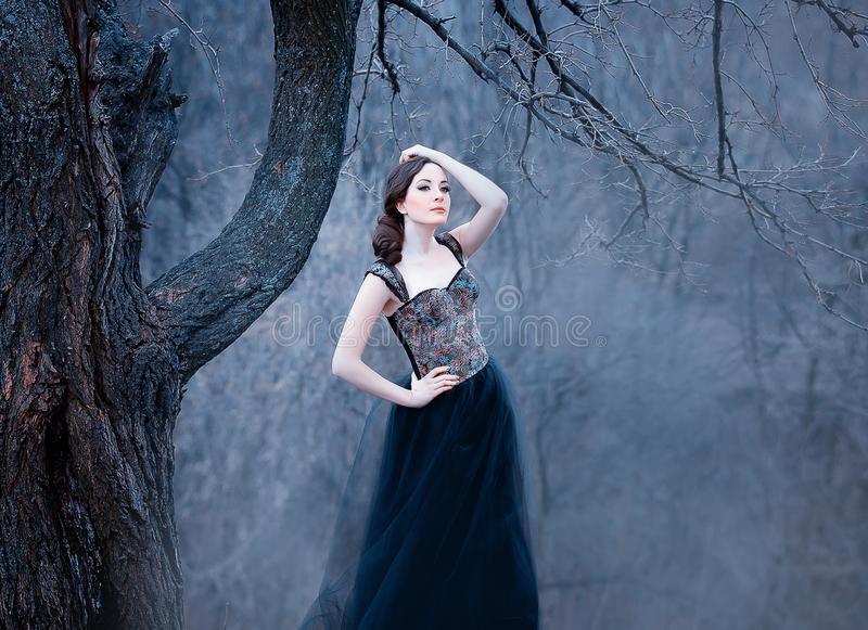 Amazing tender brunette, lady in a long black dress with bare open arms and shoulders, the girl alone in the autumn cold stock photography