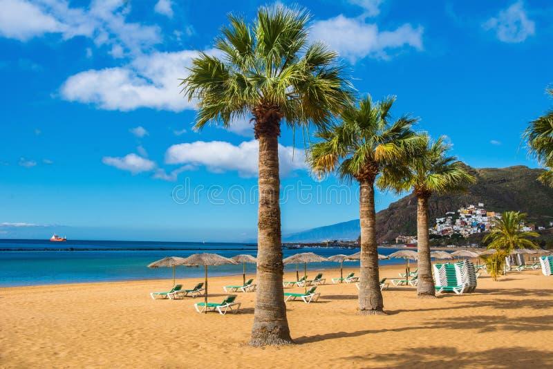 Amazing view of beach las Teresitas, Tenerife, Canary Islands. Amazing view of beach las Teresitas with yellow sand, umbrellas, longues and palm trees. Location stock photo