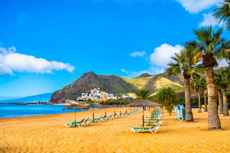 Amazing view of beach las Teresitas with yellow sand, umbrellas, longues and palm trees. Location: Santa Cruz de. Tenerife, Tenerife, Canary Islands. Artistic royalty free stock image