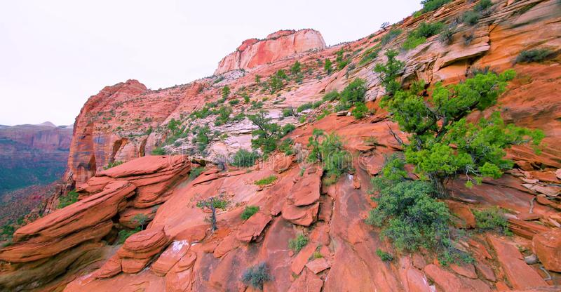 Amazing view of Canyon Overlook Trail, Zion national park, Utah royalty free stock photos