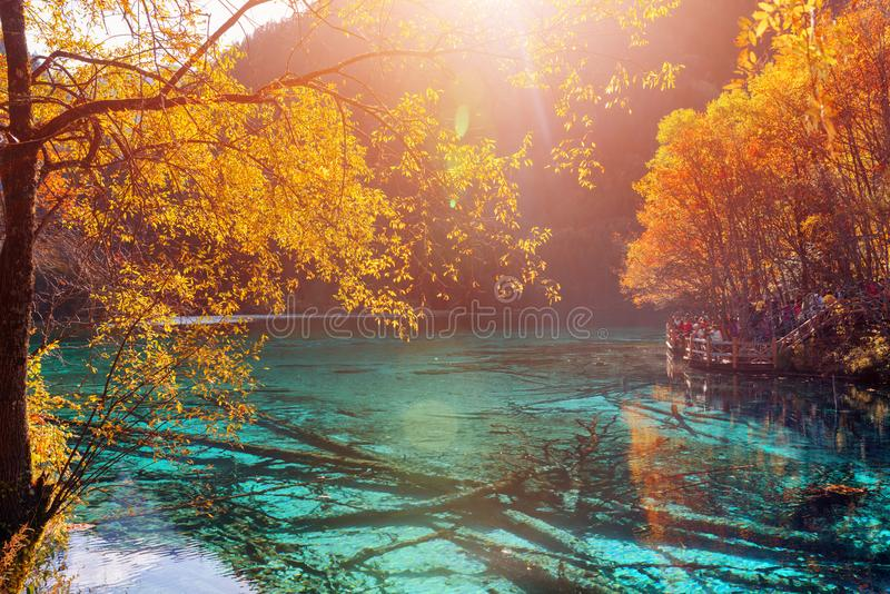 Amazing view of the Five Flower Lake Multicolored Lake stock photography