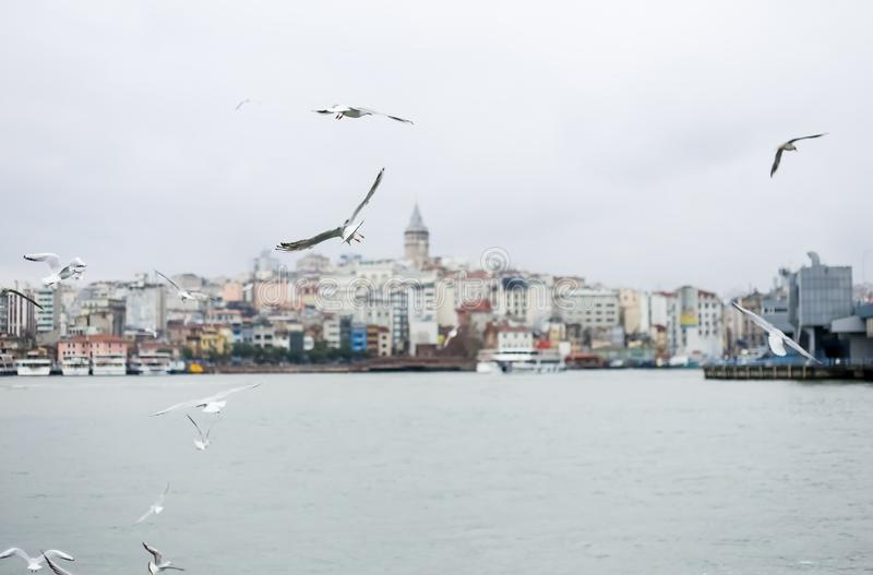 Amazing view of Galata Tower landmark in Istanbul, the capital of Turkey. Post card view. Istandul, January 2019. Tower of Galata in Istanbul, the capital of stock photo
