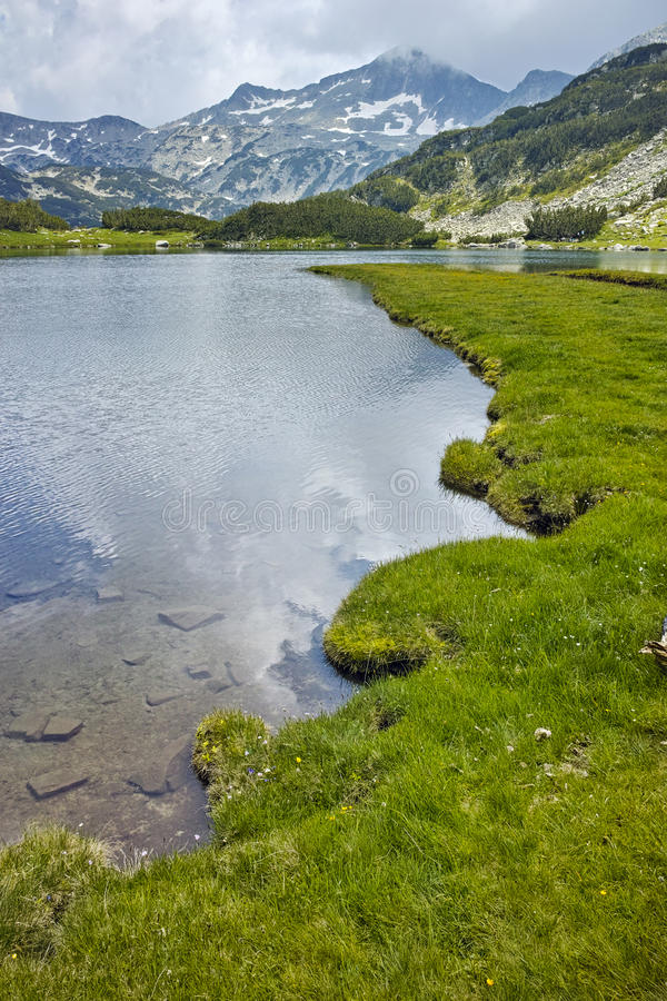 Amazing view of green meadows around Muratovo lake, Pirin Mountain. Bulgaria royalty free stock images